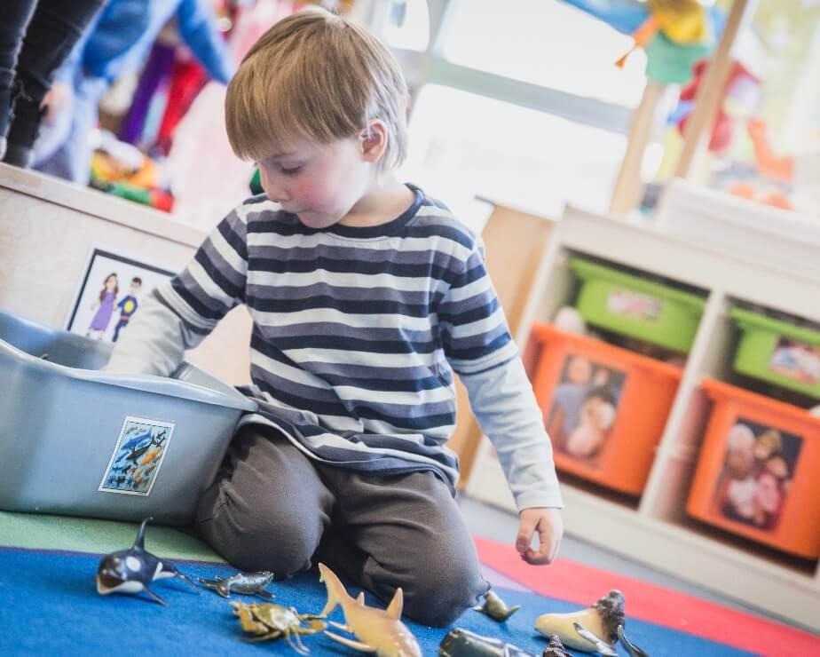 DEC-BAC intégré en Techniques d'éducation à l'enfance - Éducation préscolaire et enseignement primaire 7